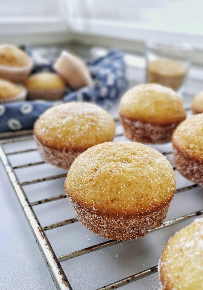 Sugar Donut Muffins