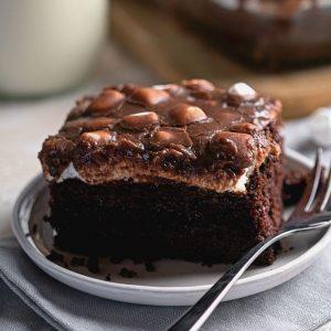 Easy Mississippi Chocolate Mud Cake Recipe